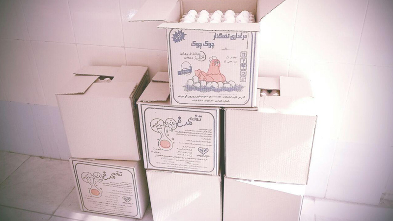 مقادیری گوشت قربانی و ۷ کارتن تخم مرغ اهدایی همیاران ارجمند راه آسمانی