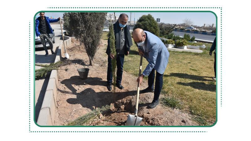 کاشت نهال بمناسبت روز درختکاری در بوستان مجاور پروژه مجتمع امید راه آسمان